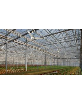 NORDIK TROPICAL IPX5 - ventilador para techo resistente