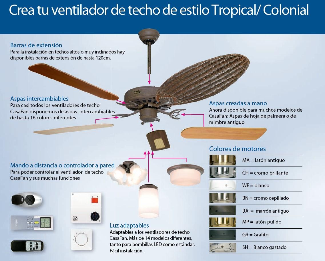 combinaci%C3%B3n-tropical-palma-ventilador%20de%20techo.jpg