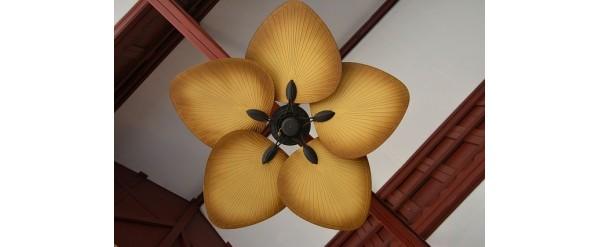 La elección del ventilador de techo es ahora el doble de fácil